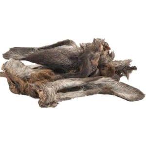 szárított szőrös szarvasfül