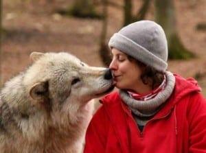 farkas és ember