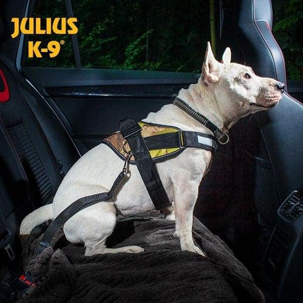Biztonsági öv adapterrel kutyáknak autós utazáshoz, Julius K9