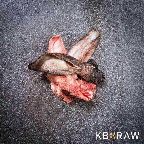 Fagyasztott nyers szőrös nyúlfül, KB RAW