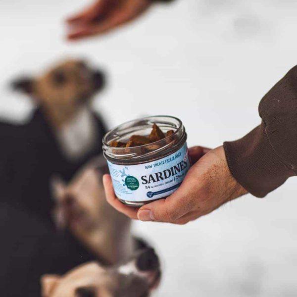 Fagyasztva szárított szardínia BARF jutalomfalat, Pet Farm Family