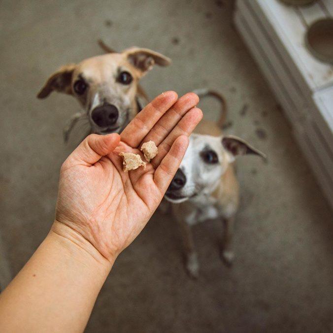 Jutalomfalatok kutyáknak